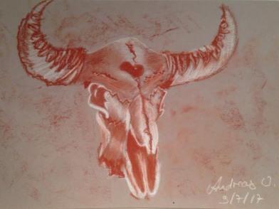 Bison Schädel von Andreas nach drei Stunden Kunstunterricht bei Cleve