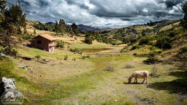 Ayahuaska Zeremonie, Cusco, Esel, Fuji XT20, Haus, Healing Tree Center, Inkaruinen, Landschaft, San Pedro Retreat, Wolken_DSCF1099_1180